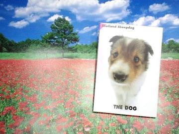 本犬送180円kgTHEDOGPostCardシェットランドシープドッグポストカード冊子Book