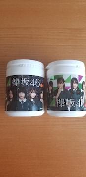 欅坂46 キュートデザインボトルセット
