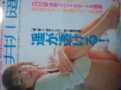 井川遥トレカ32枚入りトレカ本「井川遥TRADINGCARDBIBLE」