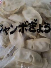 ☆大人気 ジャンボギョーザ 30g×30個  冷凍