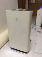 SHARP 除菌イオン空気清浄機 24畳