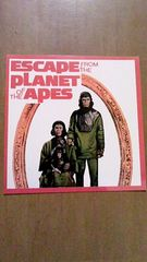 ERCAPE FROM THE PLANET OF THE APES 猿の惑星 ステッカー