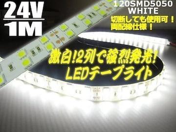 24V/船舶漁船用/シリカゲル防水LEDテープライト蛍光灯航海灯/1M