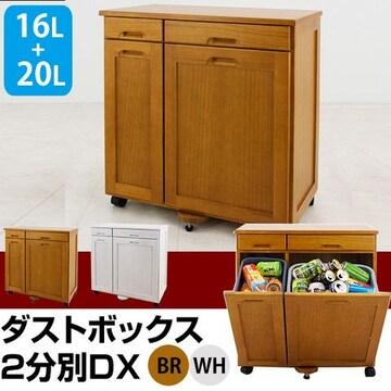 天然木 ダストボックス 2分別DX BR/WH